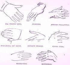 disegni-anatomici
